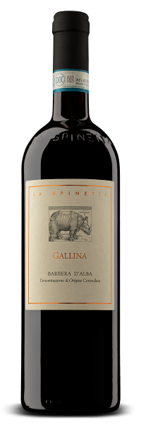 Barbera d'Alba DOC Gallina